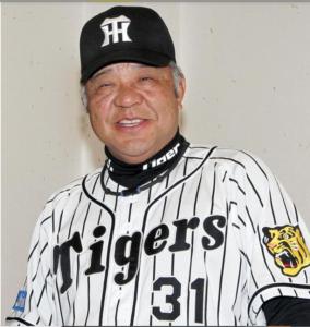 掛布_阪神‗野球